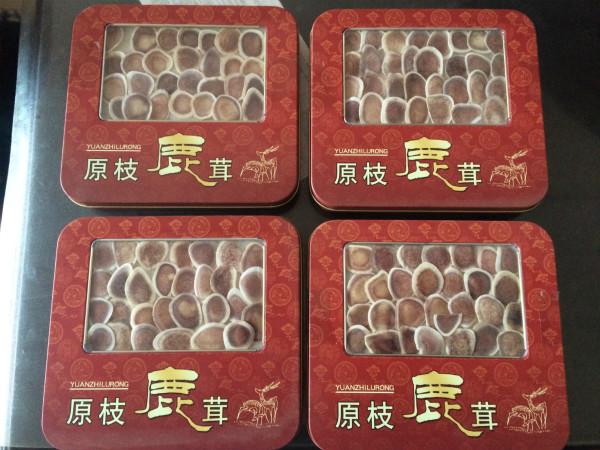 鹿茸片 礼盒