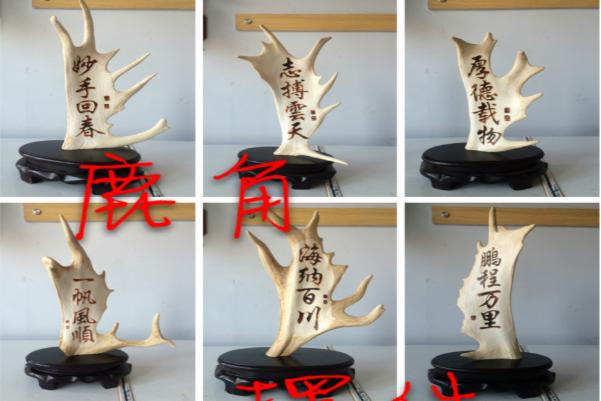 鹿角画 鹿角字